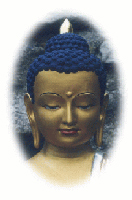 Buddha2.jpg?width=200