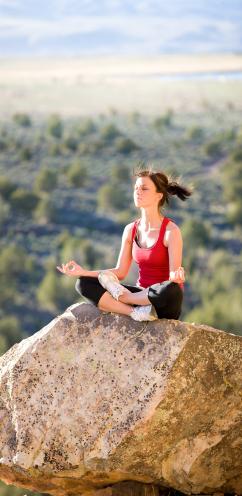 Erdung – Yogawiki