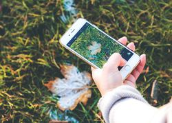 Herbst Iphone Handy Smartphone.jpg