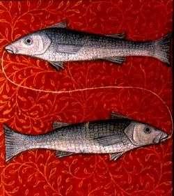 Fische Sternzeichen Yogawiki