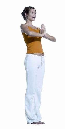 Zungen – Yogawiki